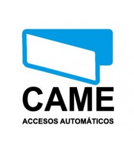 CAME G1325 Комплект противовесов (20 шт.)