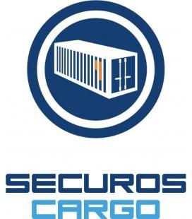 SecurOS® Cargo - Лицензия модуля распознавания номеров контейнеров