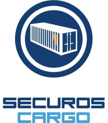 SecurOS® Cargo - Лицензия дополнительного канала распознавания номеров контейнеров